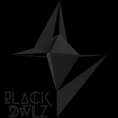 2013, logo et 3d pour Black Owlz