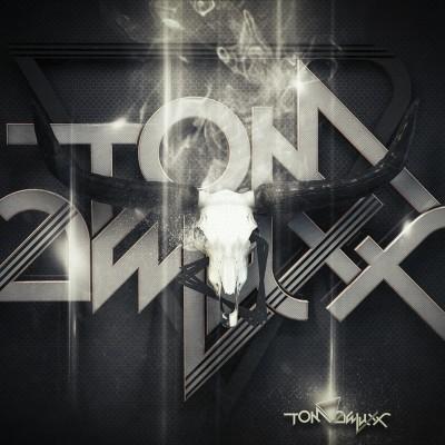 2013, Logo et 3d Tom Deluxx