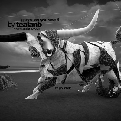 2013, 3d bull Tealanb